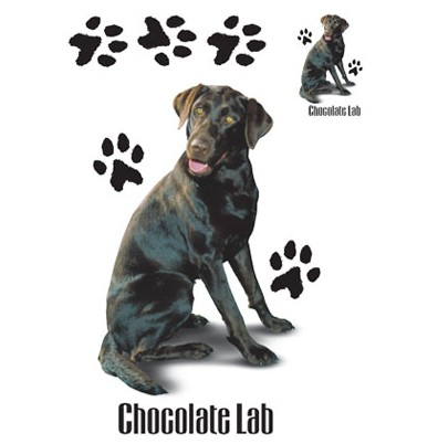 Cachorro Chocolate - Adulto - 6 Unid.