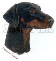 Cachorro Doberman Pinscher - Adulto - 6 Unid.